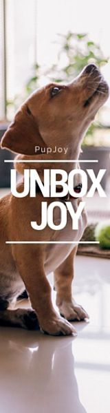 Customizable and organic dog treat box delivered to your door. Get $10 off your order. Great holiday gift (Affiliate Link) #dogs #dogtreats