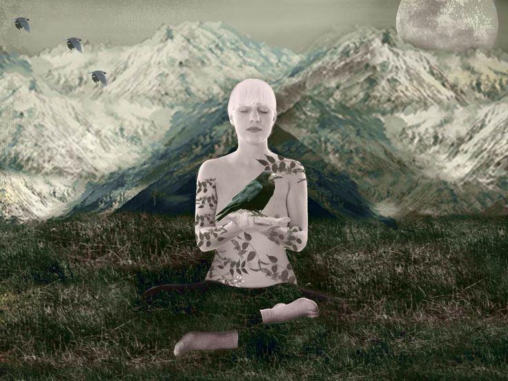 peace, nature!
