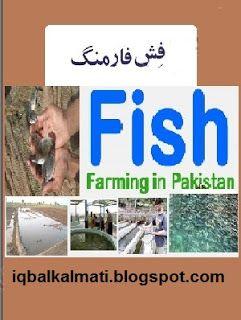 Fish Farming In Pakistan Urdu Book Free Download is available to read online and download http://iqbalkalmati.blogspot.com/2016/06/fish-farming-in-pakistan-urdu-book-free.html
