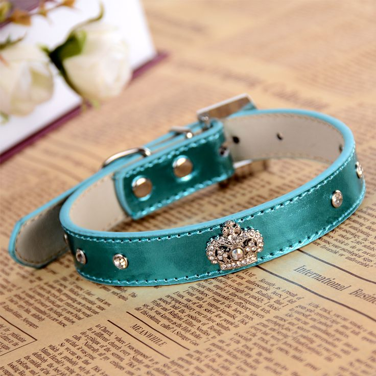 Rhinestone Buckle Dog-Collar Leather Collar For Dogs Rhinestones Crown Charm Pet Necklace Dog Health Supplies // FREE Shipping //     Get it here ---> https://thepetscastle.com/rhinestone-buckle-dog-collar-leather-collar-for-dogs-rhinestones-crown-charm-pet-necklace-dog-health-supplies/    #hound #sleeping #puppies