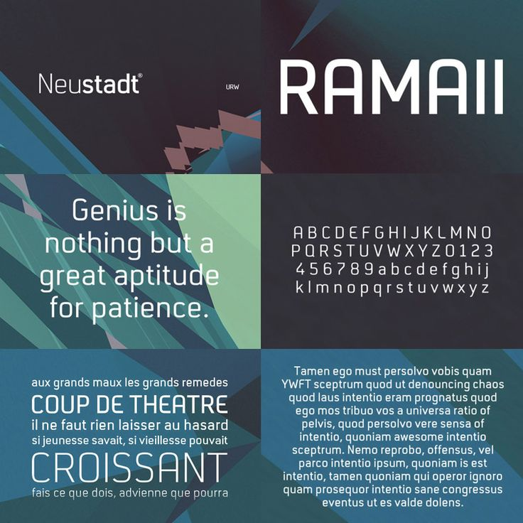 Designed by Joern Oelsner, the Neustadt font family was originally designed as a corporate font for Sport 2000, one of the leading buying groups in the European Sport Retail Industry. After it has been successfully established, it is now available in a revised version for the general market.