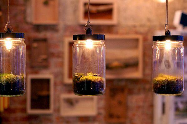 DIY Terrarium Pendant Lamps