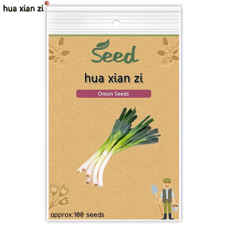 ХУА СЯНЬ ЦЗЫ Китайский Зеленый Лук Семена Органический Овощной Семян Главная Сад Бонсай Растения 100 семена/мешок