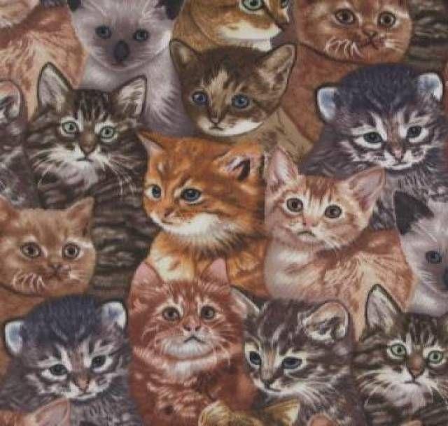 Cats Kittens Print Fleece Fabric Textile Anti Pilling Polar Fleece for DIY projects and Halloween only $8.95 #catlovers #animallovers #welovecatsandkittens