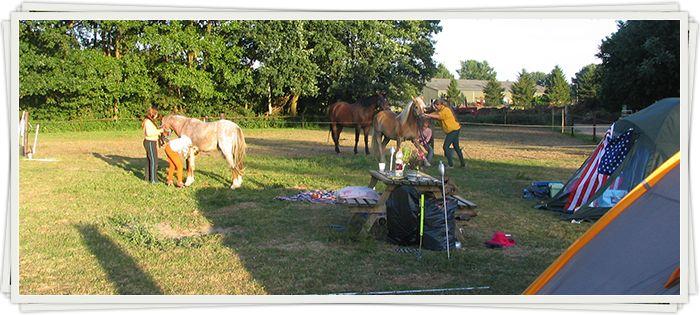 Camping Boszicht - Laag Soeren (Veluwe) Mogelijkheden voor combinatie 'dagje uit': Apenheul, Julianatoren, Burgers' Zoo, Dierense Speeltuin,...