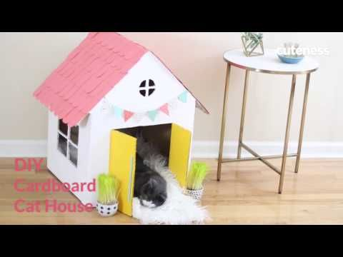 How To Build A Cat House - Cuteness.com - YouTube