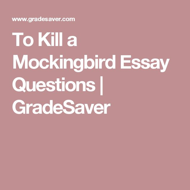 to kill a mocki essay The only mockingbird commonly found in north america is the northern mockingbird (mimus polyglottos) the greek word polyglottos means multiple languages species.