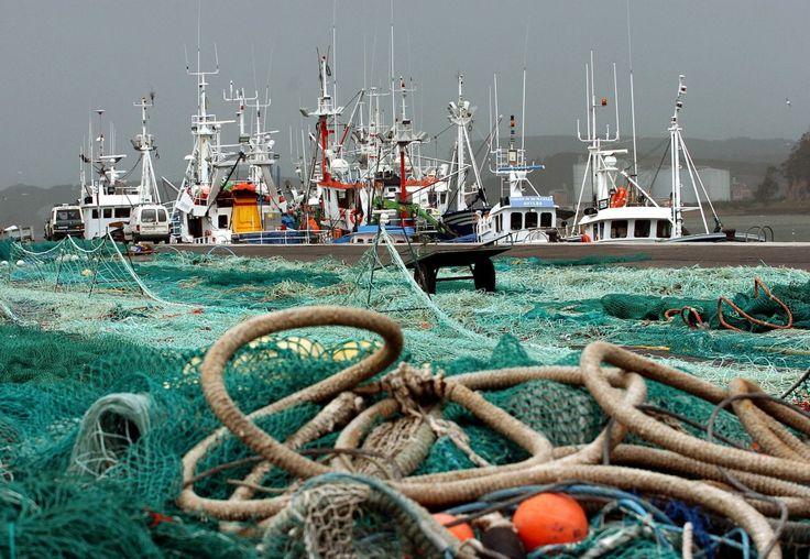 La costera de la caballa es una de las más importantes del Cantábrico. Buques en el puerto de Avilés (Asturias). EFE/ J.L.Cereijido