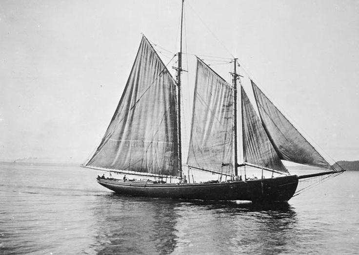 Fishing schooner strait of canso nova scotia item 1 for Nova scotia fishing