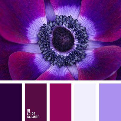 Aquí vemos una combinación llamativa y lujosa de colores violeta vivo, fucsia intenso y púrpura.  Estos tonos bonitos contrastan bien con el malva claro y el lavanda suave.  Tal gama de color les quedará muy bien a las personas morenas con ojos oscuros. Les dará un toque chic y atractivo a sus looks.