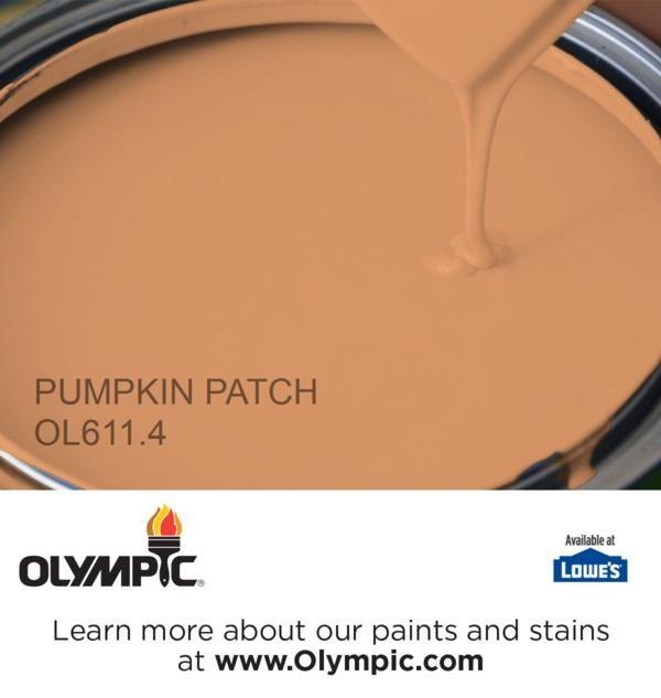 Pumpkin Orange Paint 12 best popular orange paint colors images on pinterest