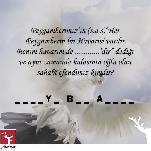 Sahabe Efendilerimizi (r.a) ne kadar tanıyoruz? #guvercin #sahabe #zubeyr #Peygamber #havari #bulmaca #bilmece