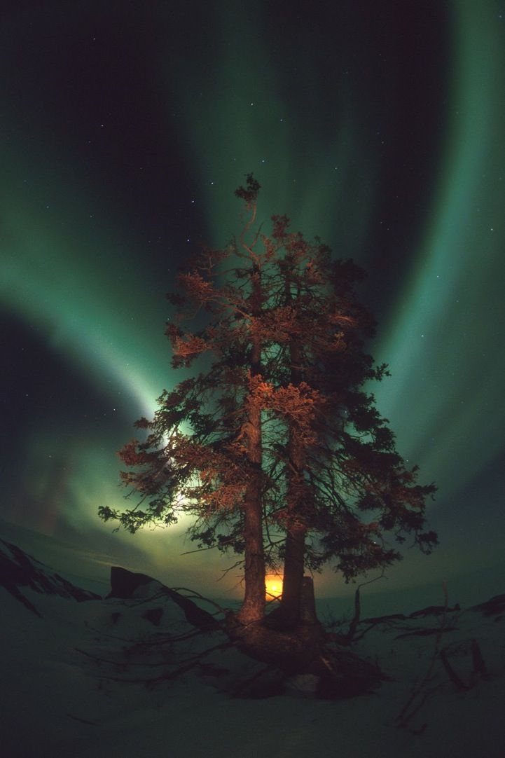 Extraordinary Aurora Landscape Photography