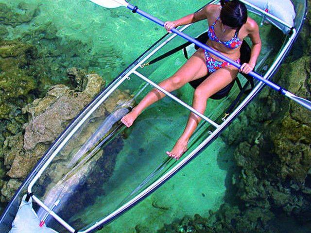 Clear Kayak, Snorkeling & Gumbalimba Park in Mahogany Bay, Isla Roatan. This is so cool!