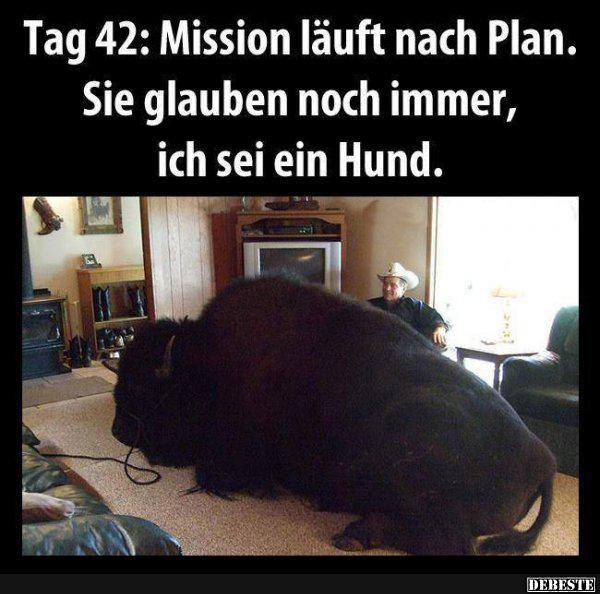 Tag 42: Mission läuft nach Plan..