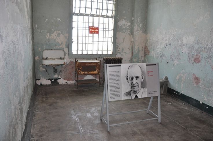 This is the prison jail cell of the famous prisoner Bird Man of Alcatraz Robert Stroud..This cell located in the hospital ward on Alcatraz Island. This is where Stroud spent 11 of his 17 years. In 1959 he was transferred to federal prison in Springfield Missouri where he died in 1963.