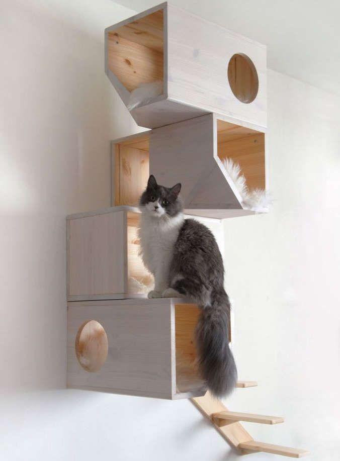 ... Arbres À Chat Maison sur Pinterest  Arbres à chat, Chats et Arbres