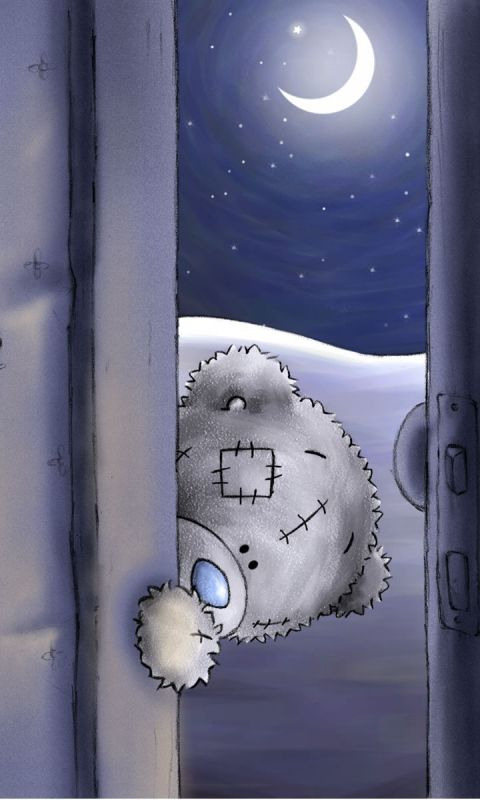 480x800 Wallpaper teddy bear, look, door, funny