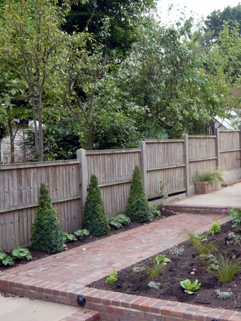 138 Best Images About Long Thin Pretty Garden On Pinterest