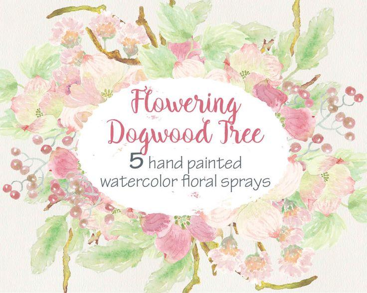 Watercolor sprays of Doogwood Tree flowers: wedding clip art; weddings; 5 sprays included; blush flowers; instant download by LollysLaneShoppe on Etsy
