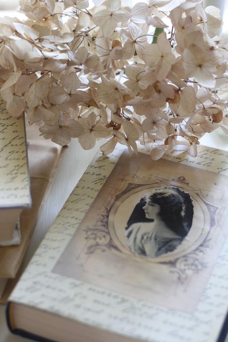 Ana Rosa . . . sweet memories