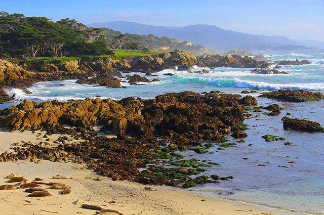 17 Mile Scenic Drive, driving through one of the most prestigious neighborhood in Carmel/Monterey in Cali❤️ 世界屈指の名門ゴルフコース、ペブルビーチ近辺のリッチな住宅街をドライブ(有料)。シーライオンがゴロゴロ🤗#pacificcoasthighway#California#montrey#carmel#17miledrive#pebblebeach#カリフォルニア#海外生活#アメリカ#旅行#絶景ポイント#旅#散歩#デート#アメリカ旅行#海岸#海#絵になる景色#ドライブ#西海岸#優雅な休日#sf#sanfrancisco#view#cali#breathtakingview #montereylocals #pebblebeachlocals - posted by Julia💕 https://www.instagram.com/flight_nurse_julia - See more of Pebble Beach at…