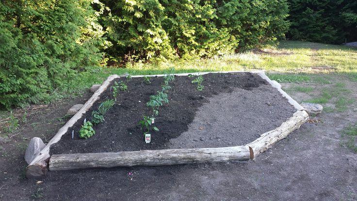 Start of garden.