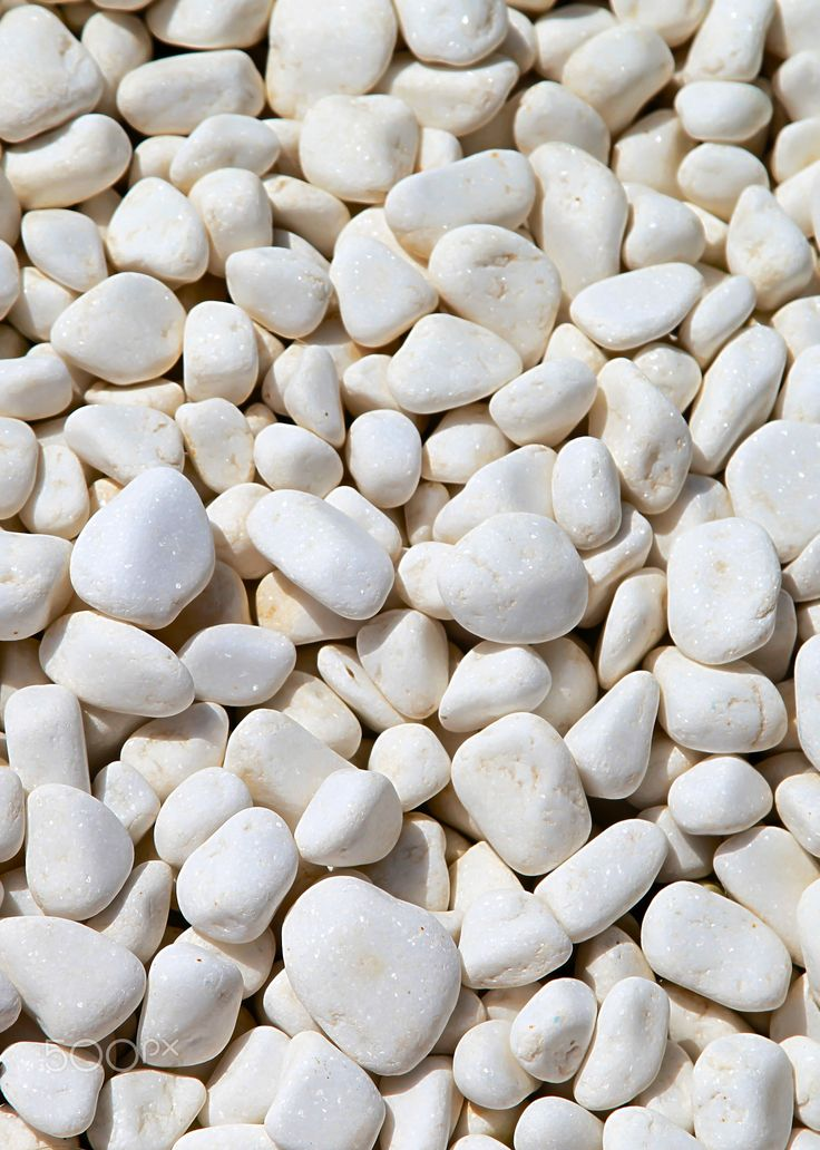 White Pebbles - Still life Photography of a group of different shape white pebbles.
