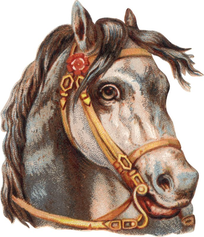 Vintage Victorian Horse Scrap