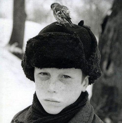 tarkovsky's the mirror (1975)