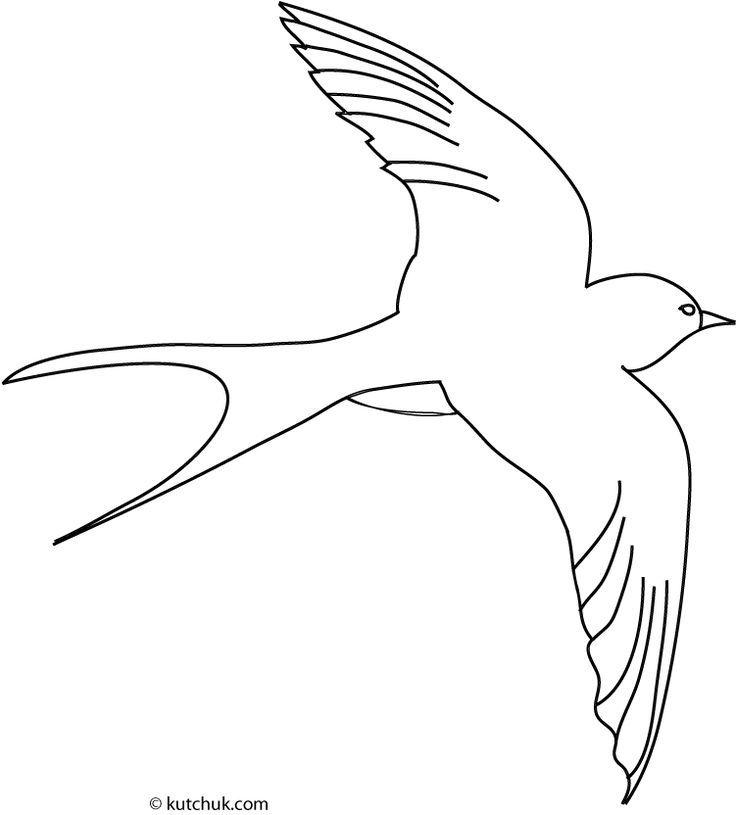 Dessin Facile Hirondelle Dessins Faciles Oiseau Coloriage