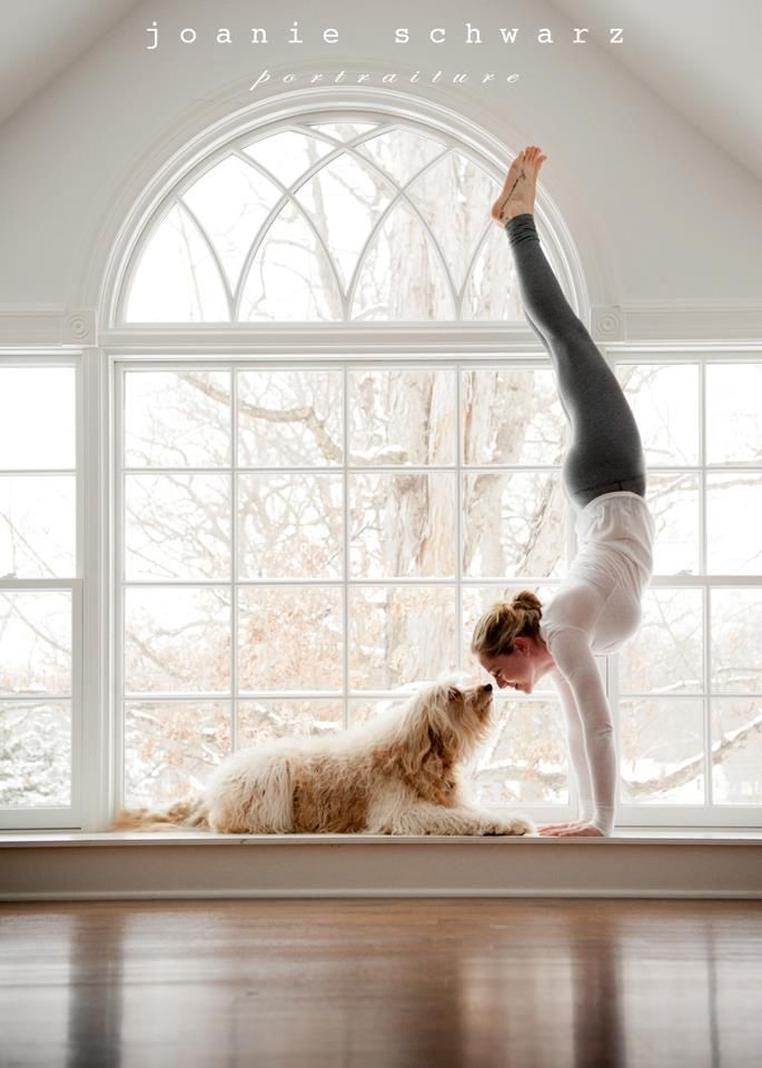"""kittydoesyoga:    Click this photo and """"like"""" it on facebook to help send my friend Jack to Wanderlust! Reblog, spread the word!!"""
