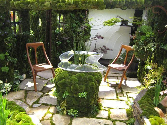 Как вырастить мох: в саду, на деревьях и камнях. Способ выращивания мха и декорация ландшафта