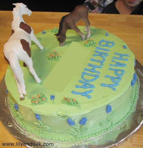 52 best images about Horse Party Ideas on Pinterest ...