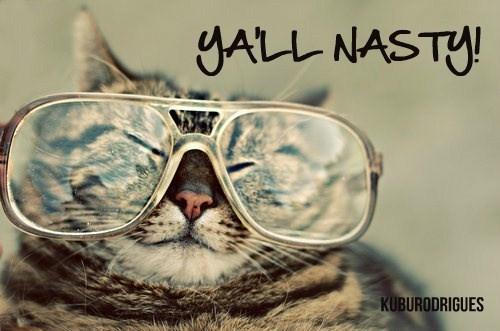 Ya'll Nasty. Cat. Glasses