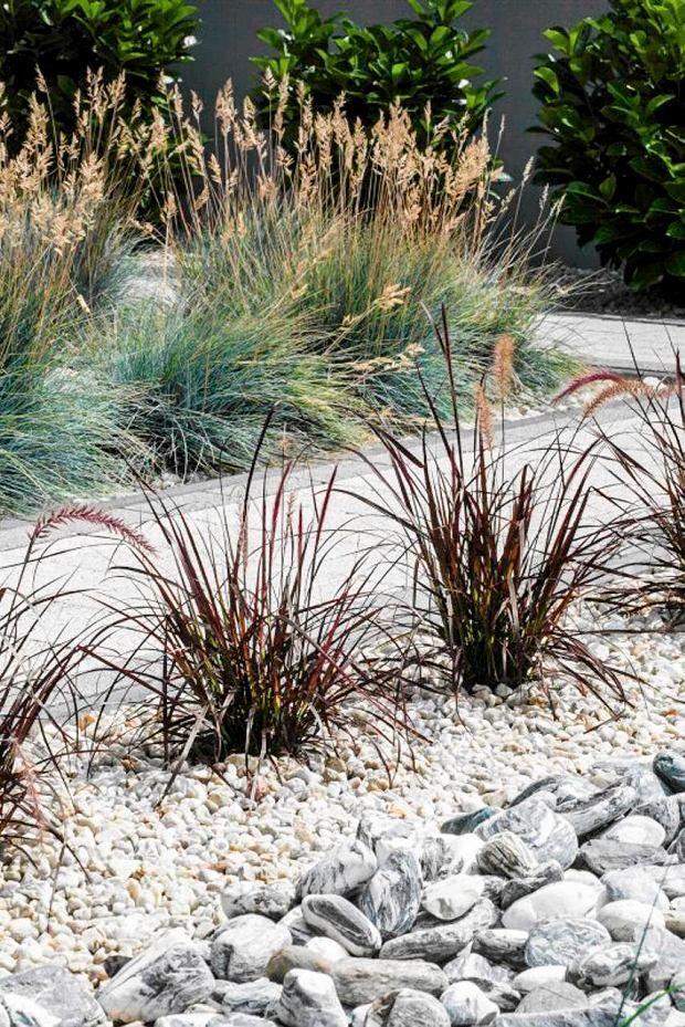 Bez przycinania, w postaci naturalnych kęp możemy posadzić trawy właściwie w każdym ogrodzie. W towarzystwie bylin lub krzewów, na tle żwiru, blisko wody, a nawet jako rośliny zadarniające.