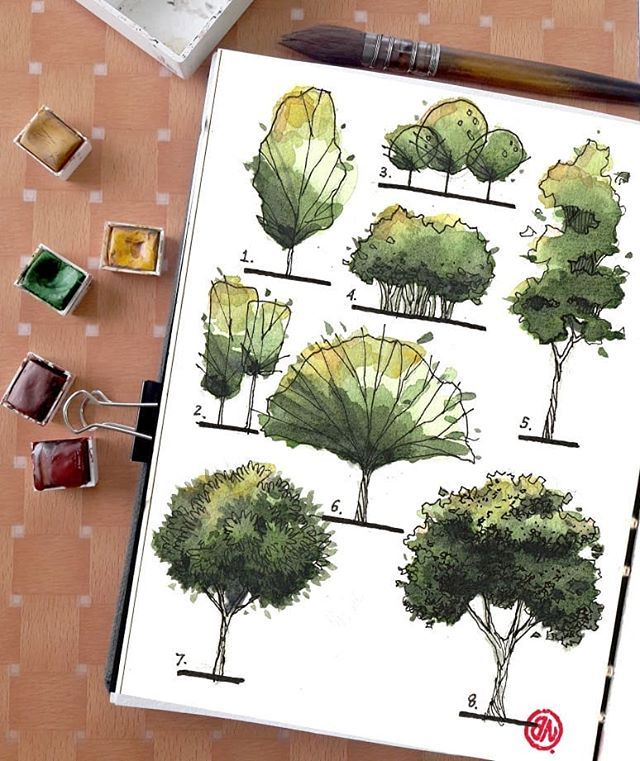 tree sketch series_1 🍀🌳🍃 . . . #sketchbook #sketchers #sketch #sketches…