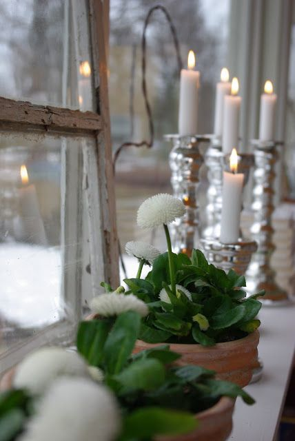 pretty candles and white pot plants, peeling window frames