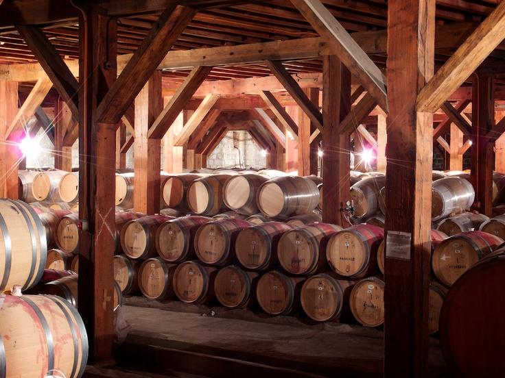 Santa Rita Winery!! :)