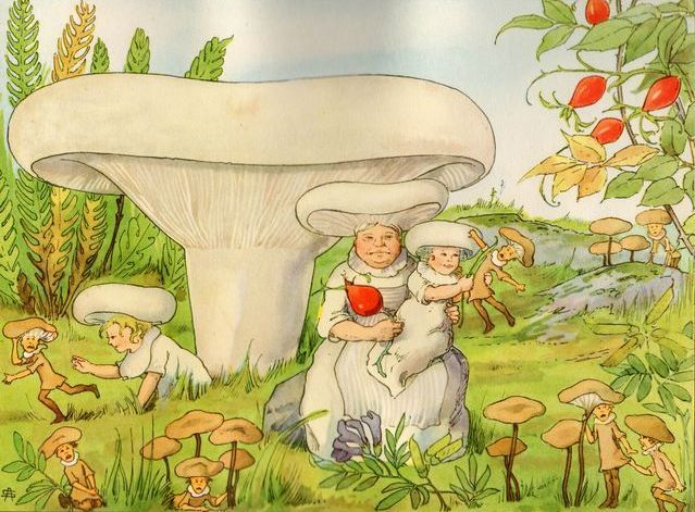 Signe Aspelin - Tales of the Mushroom Folk