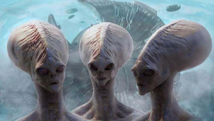 Il y aurait 5 espèces extraterrestres qui sont en contact avec la Terre en ce moment-même Croyez-vous en une Intelligence Extraterrestre? Qu'en est-il de