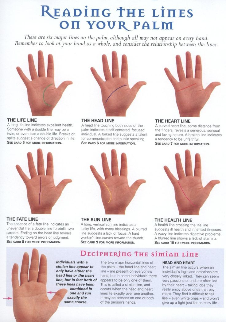 Major Lines of Your Palm - still learning since i was a pup. my yia yia was a palm reader