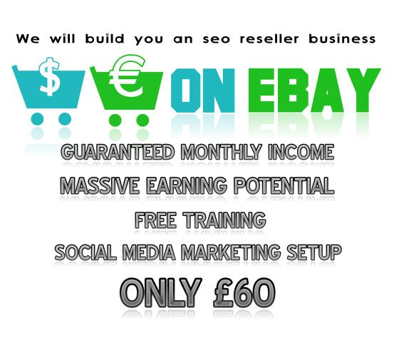 we will build you an highly profitable ebay business massive earning potential funny videoes pinterest business and ebay