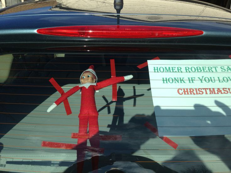 ELF FOUND There He Was Just Hanging Out In The Back Of Toms