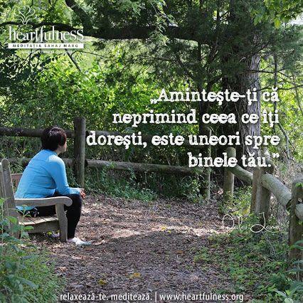 """""""Amintește-ți că neprimind ceea ce îți dorești, este uneori spre binele tău."""" ~ Dalai Lama #heartfulness   #inspiratii_zilnice   #hfnro  Heartfulness Romania - Google+"""