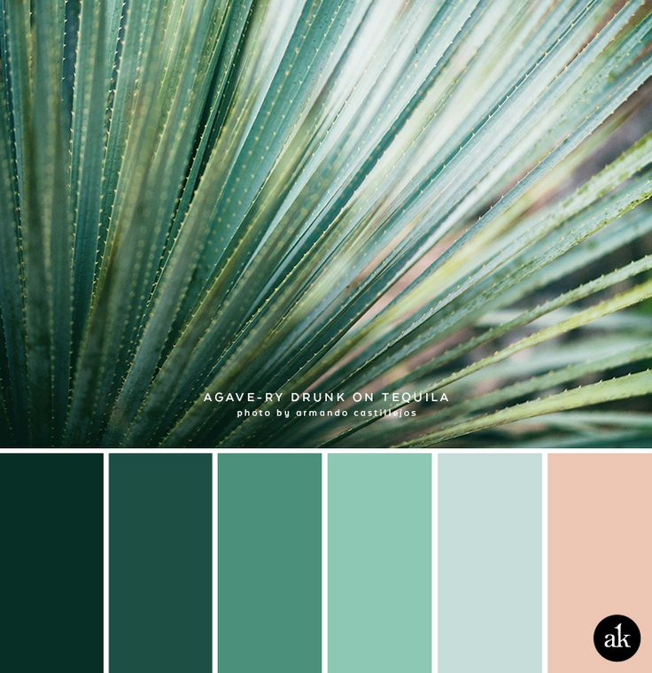 191 best color images on pinterest green plants Blue and green colour scheme