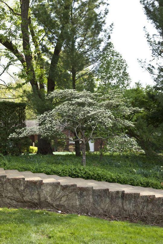Delightful Landscape Architecture   Dan Kiley | Indianapolis Museum Of Art