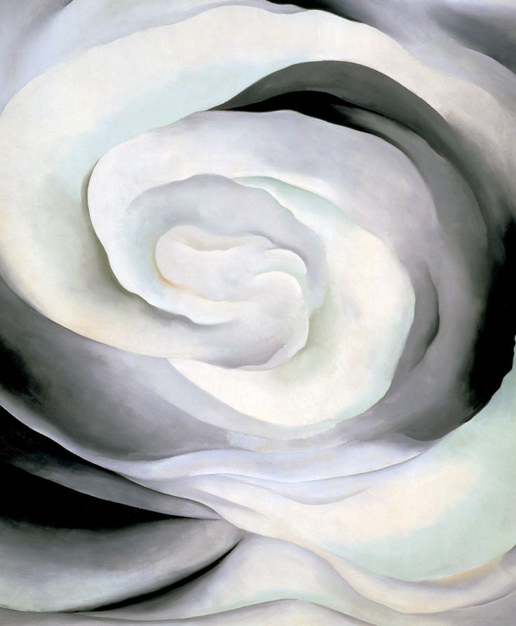 GEORGIA O'KEEFFE | Abstraction White Rose 1927
