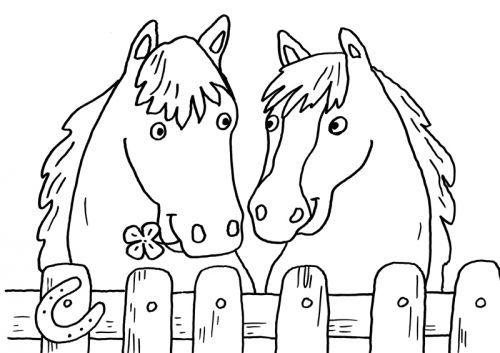 Pferde: Zwei Pferde zum Ausmalen zum Ausmalen