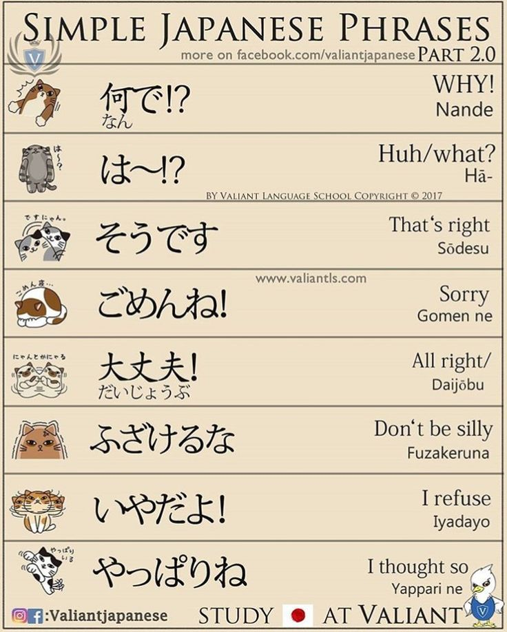 Japanese Phrases and Common Sentences - Linguanaut